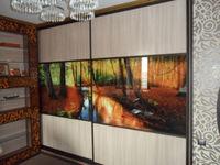 Шкаф-купе встроенный для гостиной, 2 двери по 1.4м с фотопечатью